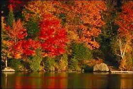 Herfst dus herfstmode!