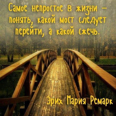 (99) ОдноклассникиСжигая за собой мосты — не возвращайтесь за пеплом!