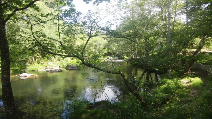 Paisaje senda fluvial río Arenterio