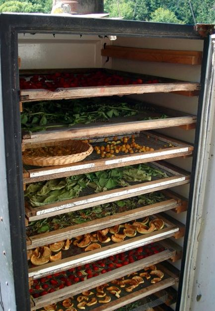 """Old fridge up-cycled to solar dehydrator."""