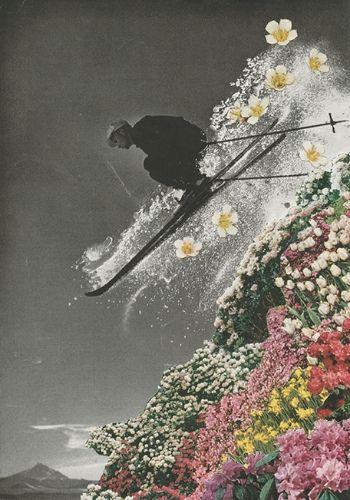 "https://flic.kr/p/dPc6dd | Spring Skiing | Magazine collage. 2013. <a href=""http://society6.com/SarahEisenlohr/Spring-Skiing_Print"" rel=""nofollow""><b>Shop</b></a> | <a href=""http://saraheisart.tumblr.com/"" rel=""nofollow""><b>Tumblr</b></a>"