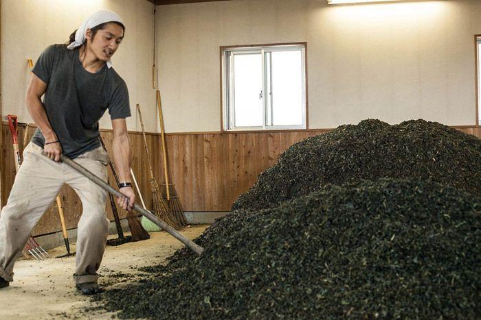 BUAISOU: los artesanos japoneses del tinte índigo