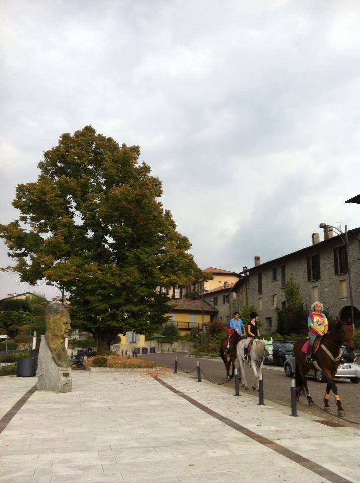 Ad #Azzate (Va) cavalli a passeggio sulla piazza Antonio Ghiringhelli :-))