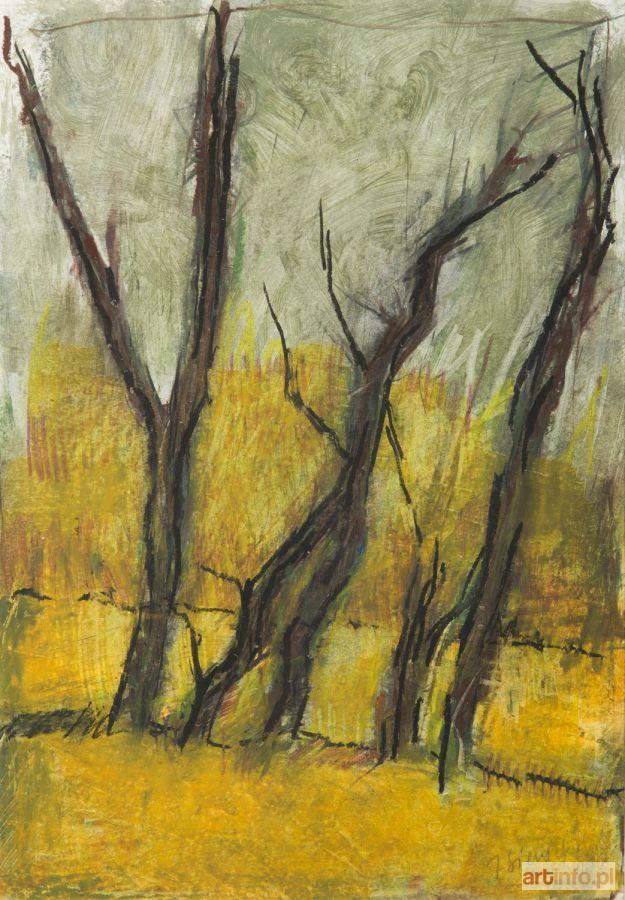 Jacek SIENICKI ● Drzewka, 1999 r. ●