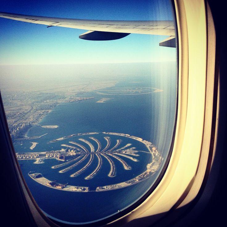 photo from airplane dubai palm jumeirah