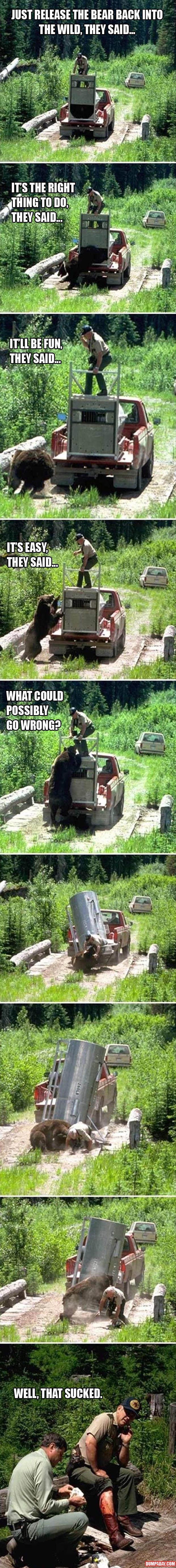 Set A Bear Free, What Could Go Wrong?