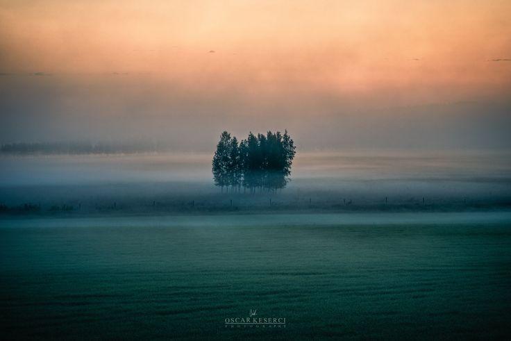 Foggy sunset by Oscar  Keserci on 500px