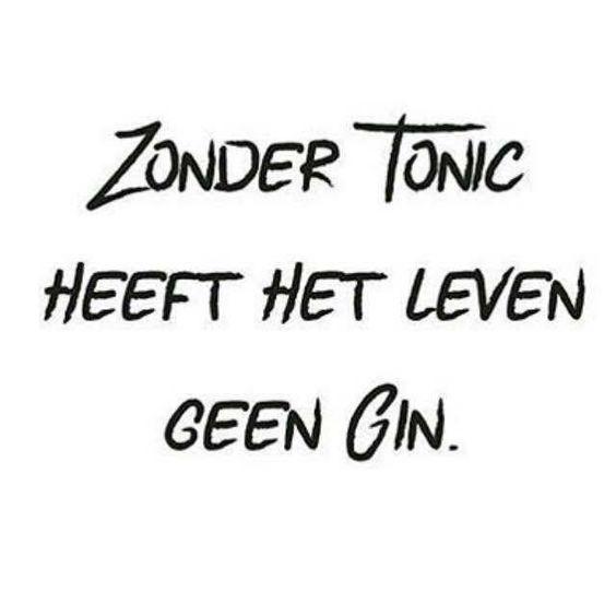 Zonder Tonic heeft het leven geen Gin.