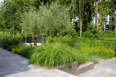 Van Raaijen Hoveniers Almere, Moderne tuin met betonelementen en weelderig groen