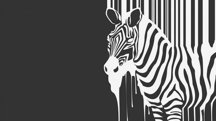 Minimalism Animals Artwork Monochrome Zebras Simple Background Barcode Wallpaper Zebra Wallpaper Zebras Zebra Black and white wallpaper zebra