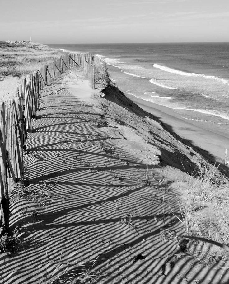 1000+ Images About Explore Cape Cod On Pinterest