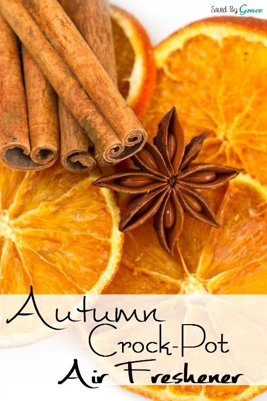 Want your house to smell warm and inviting? You must try this easy DIY autumn crockpot air freshener recipe!