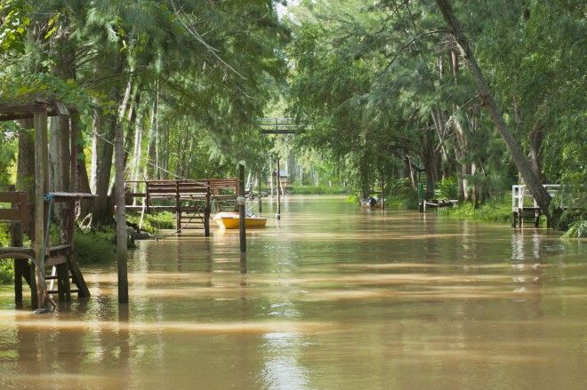 The subtropical river system just 30 minutes from Buenos Aires