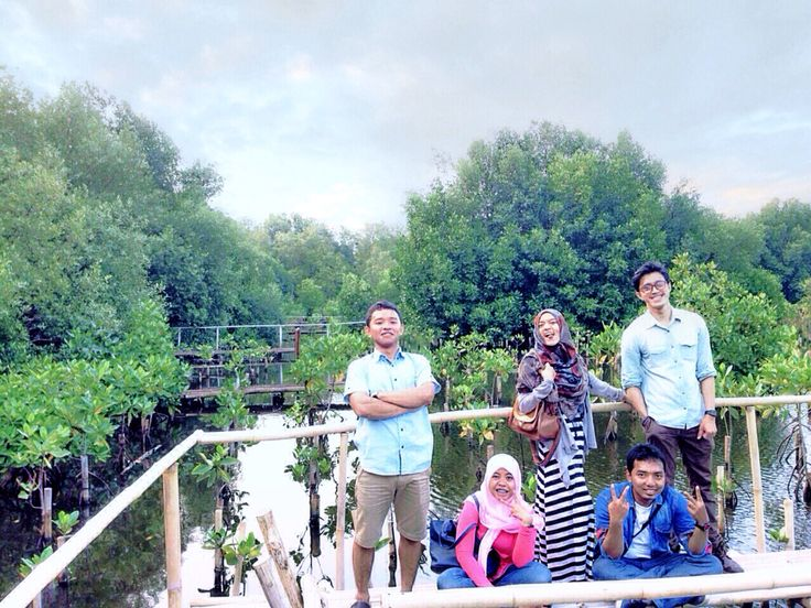 Viewpoint of beauty mangrove forests #vsco #vscocam #vscomoment #iphone #indonesia #jakarta_26oct2014