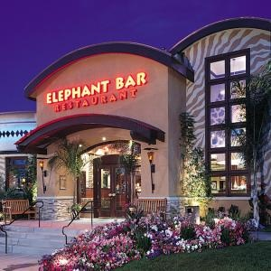 Elephant Bar Restaurant - great place to eat! and it's where I first really met Charles a yr before we started dating