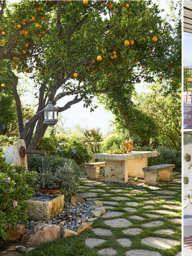 Mediterranean Garden Style Landscape With Fountain And Fruit Trees Outdoor Dinning Courtyard Gardens Design Small Courtyard Gardens Beautiful Gardens