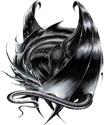 Best 25  Black dragon ideas on Pinterest   Dragon pictures, Blue ...