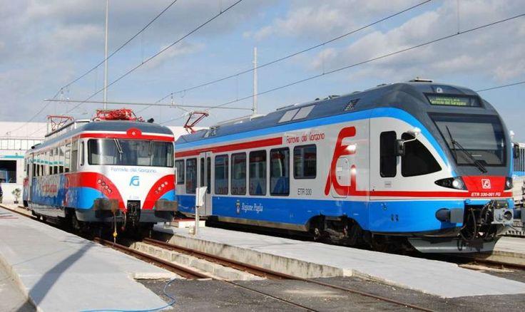 Ritrova borsello su treno e lo restituisce - http://blog.rodigarganico.info/2013/attualita/ritrova-borsello-su-treno-e-lo-restituisce/