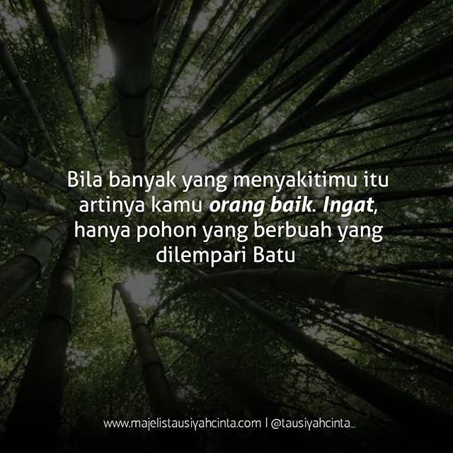 orang baik follow cintadakwahid follow cintadakwahid
