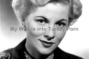 Relationship: My Wife is into Turkey Porn