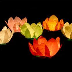 Flotte Kinesiske flyde- lanterner til konfirmation eller fødselsdag