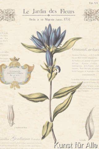 Maria Mendez - Le Jardin des Fleurs III