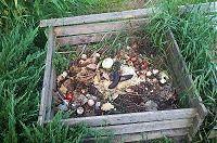 Compost et compostage