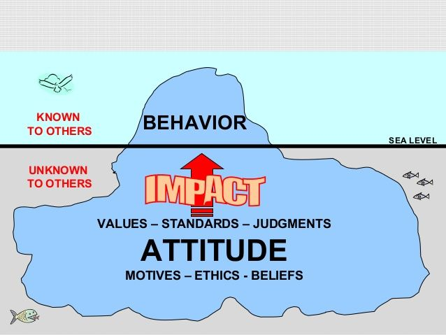 Difference Between Behavior and Attitude