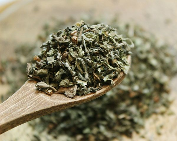 Holy basil has multiple therapeutic effects The Asians have been using this herb for this purpose since centuriesHere are the amaz