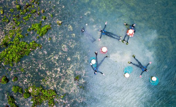 Jeju offers hands-on haenyeo experience: Live performances, a museum and guided…