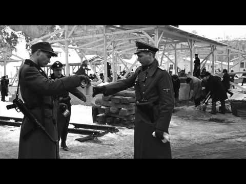 Holocaust Survivor Essay Topics