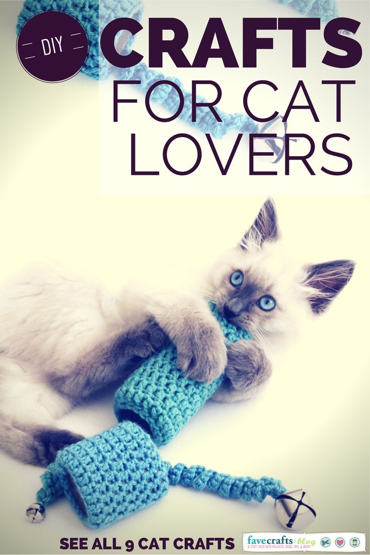best kitteh lover diy images on pinterest cat supplies kittens