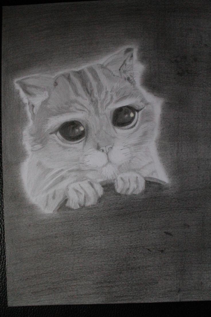 Dessin Le Chat Potté aux crayons graphite : Dessins par mylittlepearl