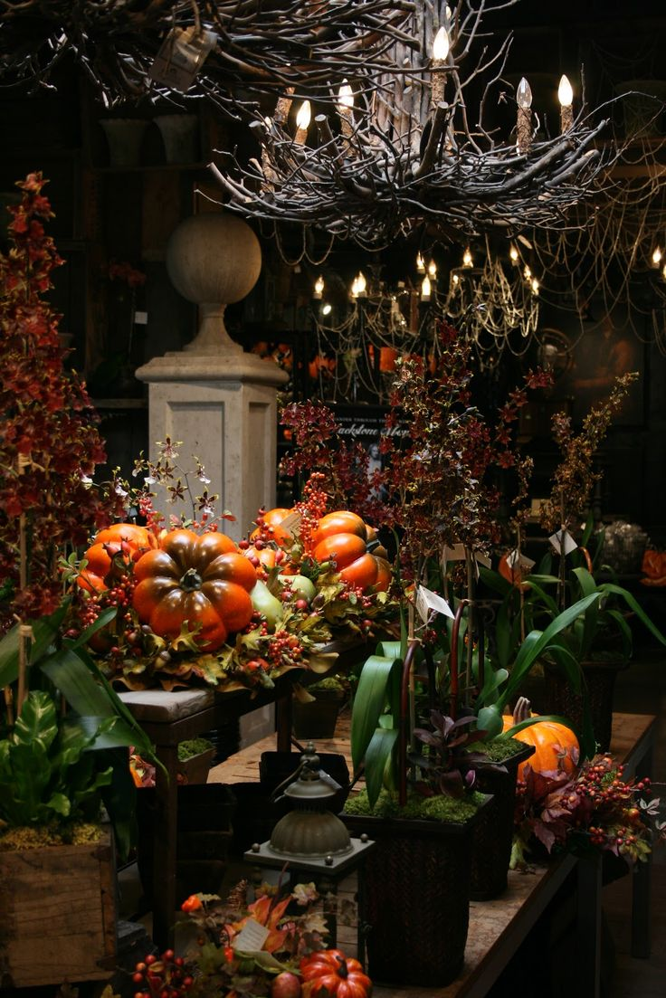 newport beach halloween display at rogers gardensthe twig chandeliers - Halloween Display Ideas