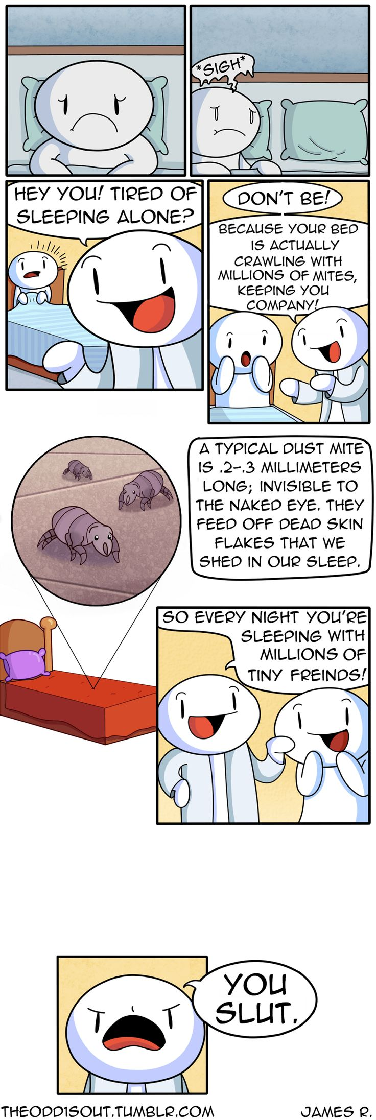 Dust Mites Are Your Friends :)
