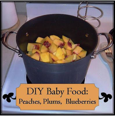 New and exciting tastes for baby. How to make peaches, plums, and blueberries into baby food. Good for baby's tummy, and easy on mama's wallet!