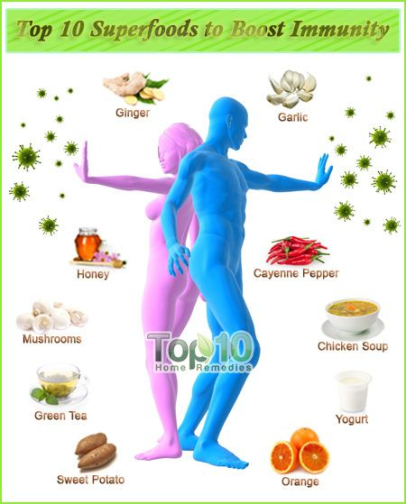 Top 10 Superfoods to Boost Immunity