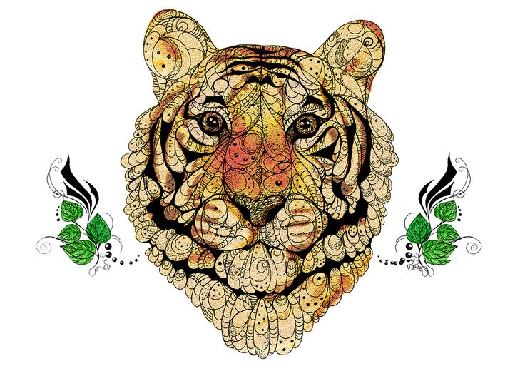 Owls and Tigers on Behance