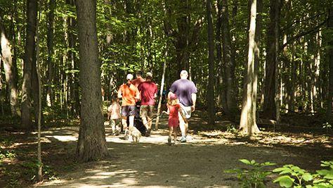 Trail in Oakville