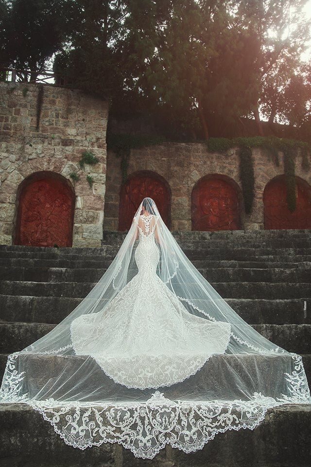 Elaborate Cathedral Veil For The Perfect Picture Bridalgown Bridal Bridalgowns Weddinggown Wedding Dress With Veil Wedding Dresses Wedding Dress Champagne
