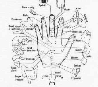 reflexology on the hand - I got a hand massage one time when i got a facial and it felt AMAZING