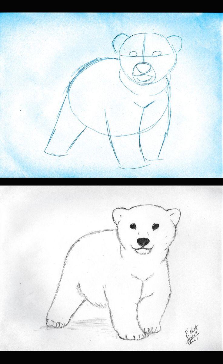 how_to_draw_polar_bear_cub_by_hauru7-d4hvvf3.jpg (900×1473)