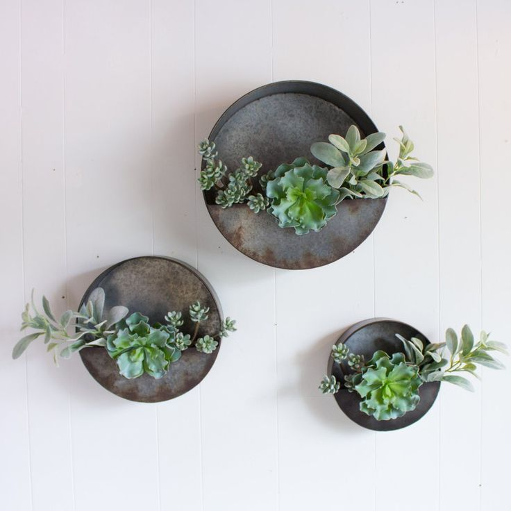 Image Result For Round Metal Wall Planters Metal Wall Planters Wall Planter Farmhouse Wall Decor