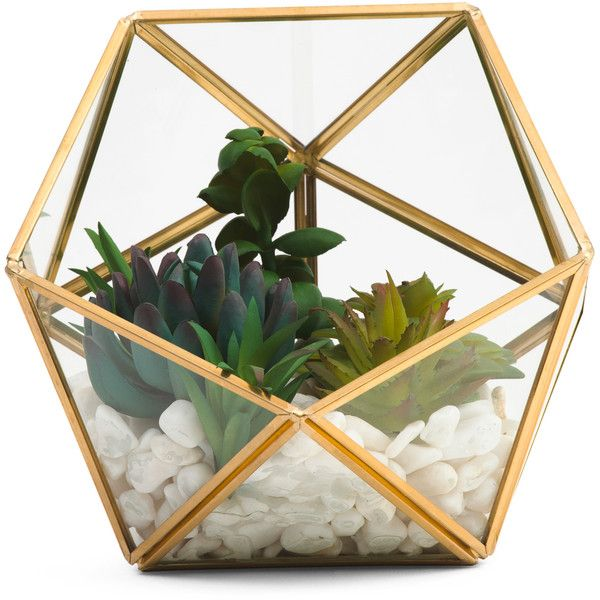 6x6 Faux Succulent Terrarium ($20) ❤ liked on Polyvore featuring home, home decor, floral decor, faux terrarium, succulent glass terrarium, artificial terrarium, succulent terrariums and fake terrarium