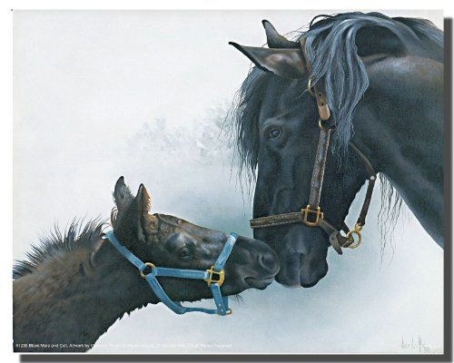 Absolutely Stunning! There's no better way to enhance the look of your home than this wonderful black mare and colt animal wall decor. This amazing horse poster will surely do wonders in your home. Horses and humans have an ancient relationship with each other. This wonderful wall poster transforms the boring dull walls of your living room into a charming, elegant space and surely grab you many compliments from your guests. It will make a great gift for any horse lover.