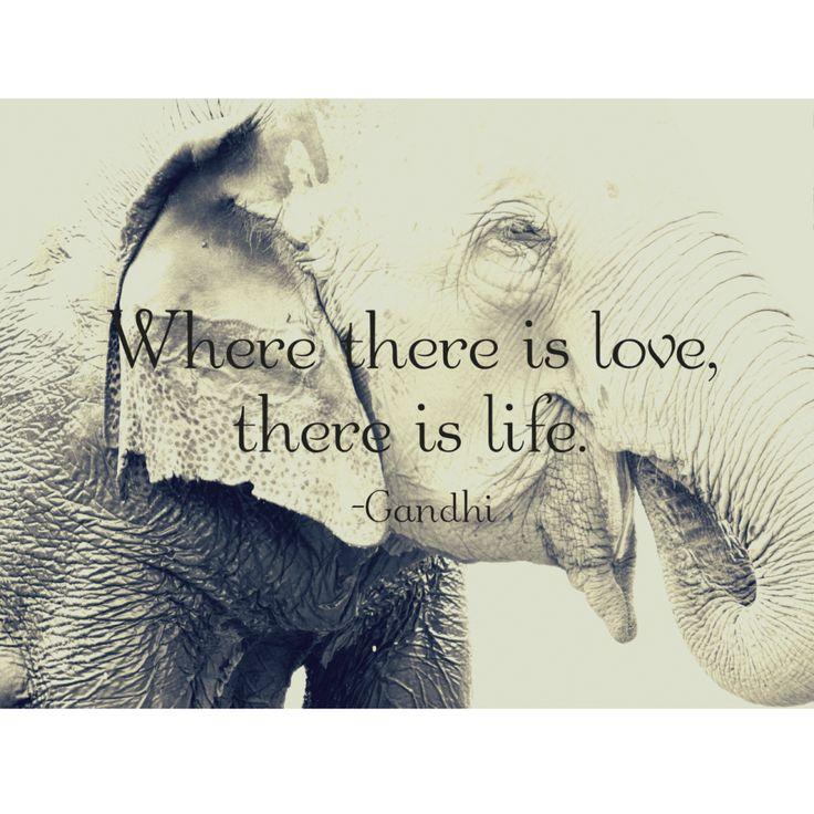 Gandhi Quote Print   Project Elephant