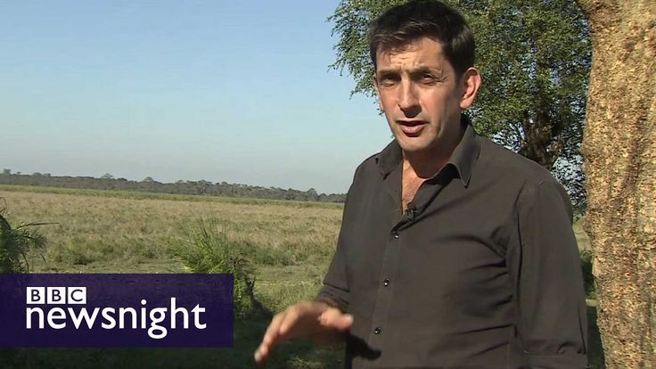 How far should we go to stop poaching? - BBC Newsnight