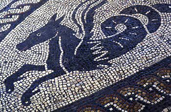 Mosaics of Roman Britain: Sea-horse, Fishbourne Roman Palace, Sussex.  Sea-horses and sea-panthers surround the central medallion of a cupid astride a dolphin.