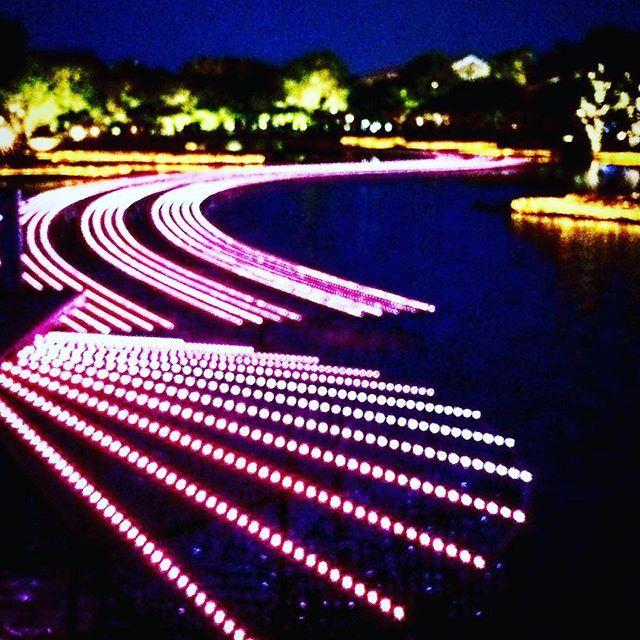 Instagram【naokazu0329】さんの写真をピンしています。 《なばなの里 イルミネーション #写真撮る人と繋がりたい #写真 #写真好きな人と繋がりたい #illumination #nighttime #sightseeing #三重県 #なばなの里 #なばなの里 #drawing #lights #夜景》