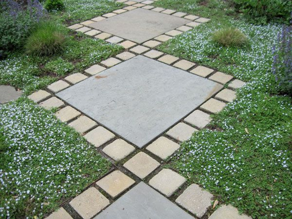images about Garden on Pinterest The flowers Ground cover
